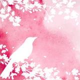 Bloeiende boom en vogels Stock Afbeeldingen