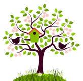 Bloeiende boom en vogels Stock Foto's