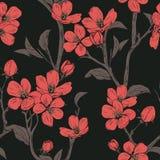 bloeiende boom Naadloos patroon met bloemen De lente bloementextuur Hand getrokken botanische vectorillustratie Royalty-vrije Stock Afbeeldingen