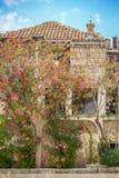 Bloeiende boom naast huis Royalty-vrije Stock Fotografie