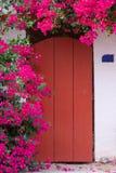 Bloeiende bougainvilleainstallatie naast de rode deur royalty-vrije stock foto's
