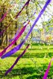 Bloeiende die tak met purpere linten wordt verfraaid Royalty-vrije Stock Afbeelding