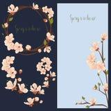 Bloeiende geplaatste de lente vectorbloemen, kaart en elementen stock illustratie