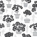 Bloeiende geraniums in potten Naadloos vectorpatroon Bloemen zwart-wit illustratie op witte achtergrond stock illustratie
