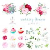 Bloeiende huwelijksbloemen, smakelijke cupcakes en bladeren groot vectorc royalty-vrije illustratie