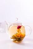 Bloeiende thee stock foto's
