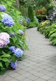 Bloeiende tuinweg stock afbeelding