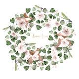 Bloeit de waterverf tropische kroon met hibiscus, eucalyptusbladeren, libel en kolibrievogel vector illustratie