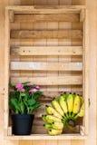 Bloem & banaan Royalty-vrije Stock Afbeeldingen