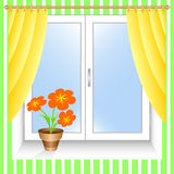 Bloem bij een venster. Royalty-vrije Stock Afbeeldingen