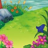 Bloem bij Illustratie van het Rivier de Zijkleurpotlood Stock Foto