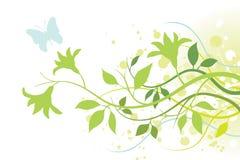 Bloem, Bladeren en een Vlinder Stock Afbeeldingen