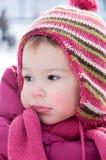 Bloem in de sneeuw Stock Fotografie