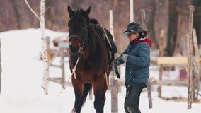 Bloem in de sneeuw E stock videobeelden