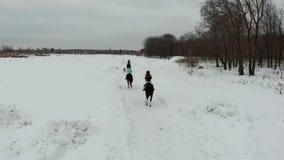 Bloem in de sneeuw Een groep jonge vrouwen die paarden berijden op een sneeuwgebied Achter mening stock footage