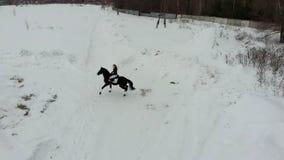 Bloem in de sneeuw Een jonge vrouw die een paard berijden op een sneeuwgebied Achter mening stock video