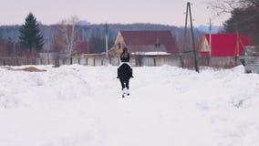 Bloem in de sneeuw Een vrouw die een paard in een dorp berijden Achter mening stock footage