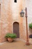 Bloem, deur en licht stock foto