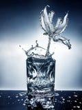 Bloem die van water wordt gemaakt Stock Fotografie