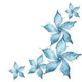 Bloem die van waterplons wordt gemaakt stock illustratie