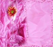 Bloem in een glas op een roze achtergrond. Kaart. Stock Foto