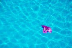 Bloem in een pool Royalty-vrije Stock Foto