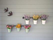 Bloem in een pot op een houten muur Stock Foto