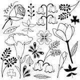 Bloem en bladkrabbel van de variatie de hand getrokken schets stock illustratie