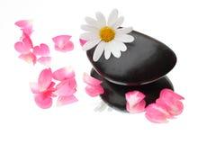 Bloem en bloemblaadjes Stock Fotografie