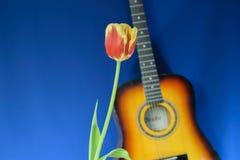 Bloem en gitaar op een blauwe achtergrond Royalty-vrije Stock Foto's