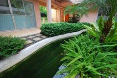 Bloem en installatie in tuin Royalty-vrije Stock Foto