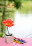 Bloem en kleurenpotlood stock afbeeldingen
