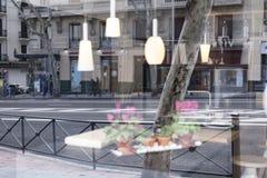 Bloem en lichte bezinning in de stad Royalty-vrije Stock Afbeelding