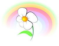 Bloem en regenboog Stock Afbeeldingen