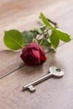 Bloem en sleutel Royalty-vrije Stock Afbeeldingen