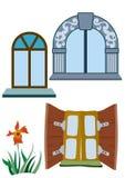 Bloem en vensters Stock Afbeelding
