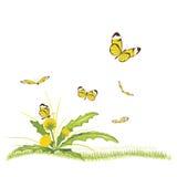 Bloem en vlinders Stock Afbeeldingen