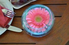 Bloem in glaskop Stock Fotografie