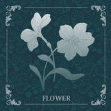 bloem, het Decoratieve schilderen Stock Foto