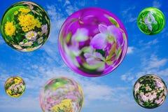Bloem in het effect van de glasbal met blauwe hemelachtergrond Stock Foto