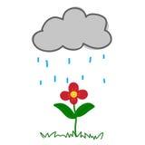 Bloem in Het Regenen Stock Foto