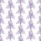 Bloem Iris Pattern Blue vector illustratie