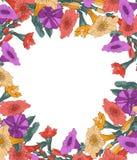 Bloem, kader, bloemen, aard, wit, de lente, rood, madeliefje, de zomer, gele gerbera, grens, roze, installatie, bloei, bloesem, stock illustratie