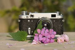 Bloem met oude camera royalty-vrije stock fotografie
