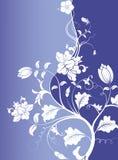 Bloem op blauwe achtergrond stock illustratie