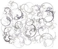 Bloem op cirkelachtergrond Stock Foto