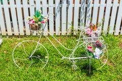 Bloem op een fiets Stock Foto