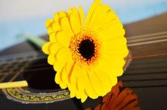 Bloem op gitaarkoorden, symbolen Stock Fotografie