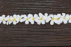 bloem op hout Stock Afbeelding