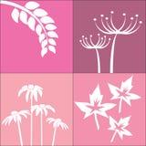 Bloem op roze achtergrond stock illustratie